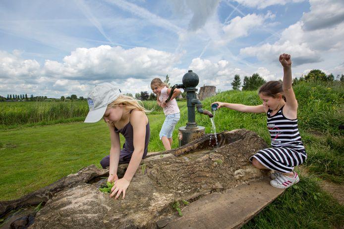 Een voorbeeld van een natuurspeeltuin. Op de foto De Woeste Weide in Schijndel.