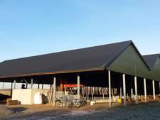 Zonnestroom voor 50 huishoudens in Kaatsheuvel