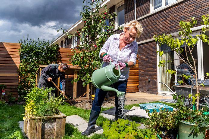 In de tuin van Petra Jansen, bewoonster Eetbare Woonwijk Rijnvliet, wordt een pruimenboom geplant.