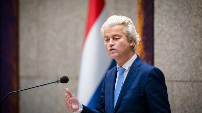 Wilders wil strijden tegen 'russofobie' en ziet in Poetin bondgenoot
