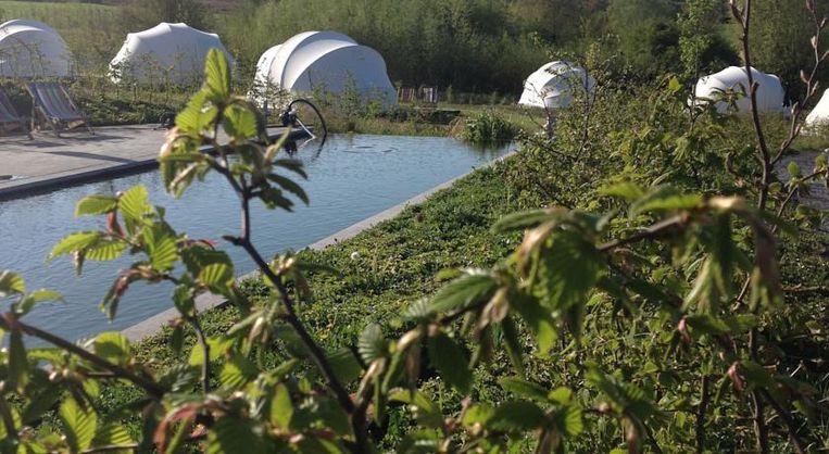 Het zwembad van Glamping Ecochique wordt ecologisch verwarmd en gefilterd.