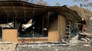 Tiener (16) opgepakt voor aansteken van bosbrand in Australië die minstens 14 woningen in de as legde