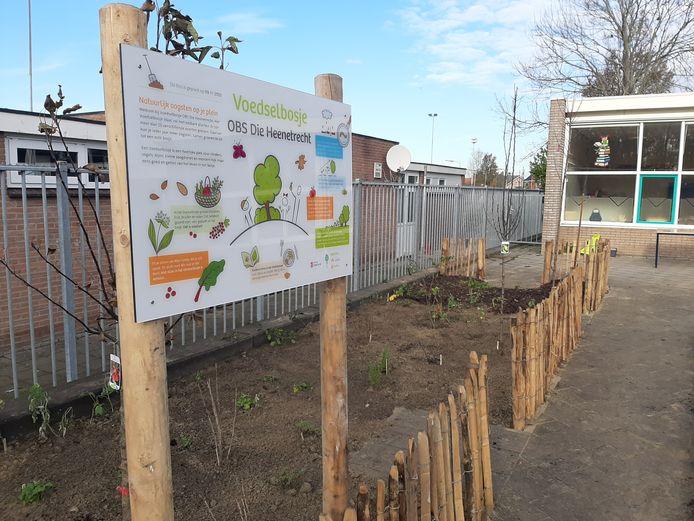 Het tuintje, aan de rand van het schoolplein, is maandag aangeplant.