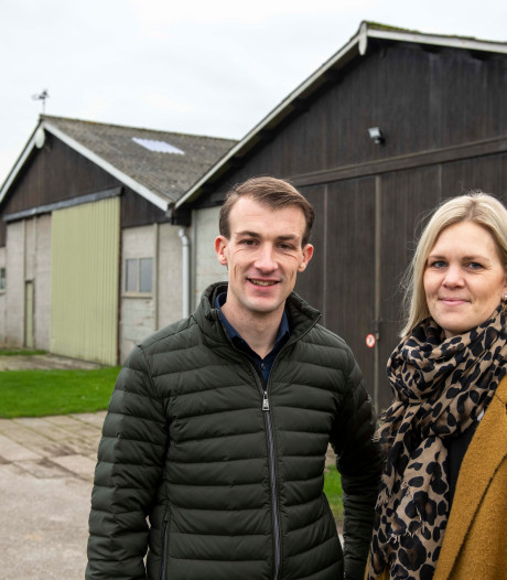 Drie oude loodsen worden één nieuwe werkplaats op camping Schippers in Nieuwvliet
