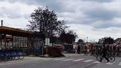 Ei zo na een ramp in BinckBank Tour: man wandelt net voor aanstormend peloton over zebrapad