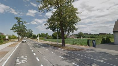 Nieuwe verkaveling met 60 woningen langs Gentseweg