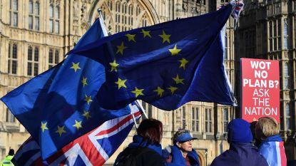 Tweede brexitreferendum komt dichterbij, maar met welke vraag?