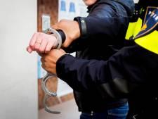 Hagenaar (34) verzet zich hevig bij aanhouding en brengt handhaver ten val