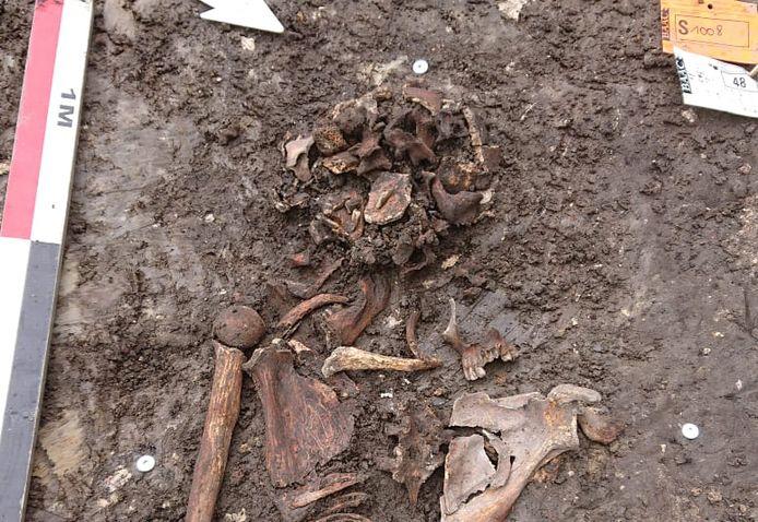Dit skelet van 400 tot 500 jaar oud is teruggevonden nabij het Sint-Maartensplein in Brugge.