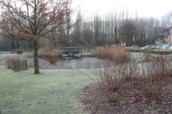 De plaats waar de Vredesboom in Ingelmunster prijkt, tussen de assistentiewoningen Ermitage en het Maria Rustoord.