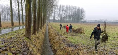 Verdringt de klimaugurk straks het Schijndelse bintje of Hollandse prei?