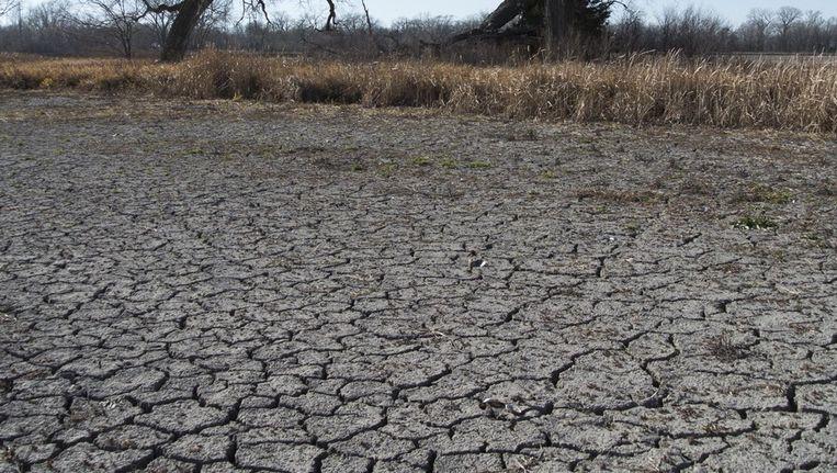 De uitdaging is om de groene politiek opnieuw uit te vinden in het licht van de chronische onzekerheid over de klimaatgevoeligheid van de aarde. Beeld ap