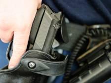 Politie lost waarschuwingsschot bij aanhouding in Beekbergen, man steekt politiehond neer