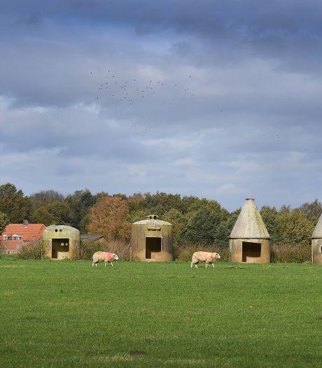 Schapensilohut in Overloon, voor wollige viervoeters zonder onderdak