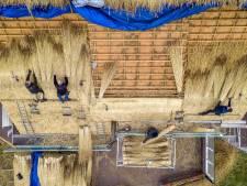 Subsidie voor je Nederlands rieten dak, om het Twentse platteland authentiek te houden