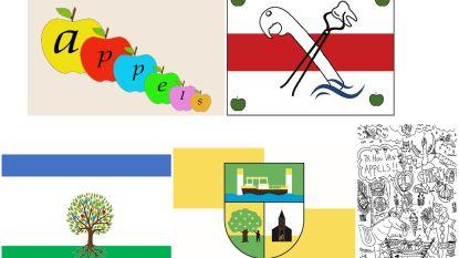 Inwoners kiezen eigen dorpsvlag: vijf ontwerpen in de running, zondag stembusgang