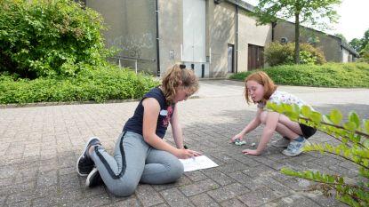 Kinderen verfraaien bibliotheekomgeving met street art