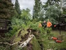 Tornado kostte gemeente Rheden circa 300.000 euro