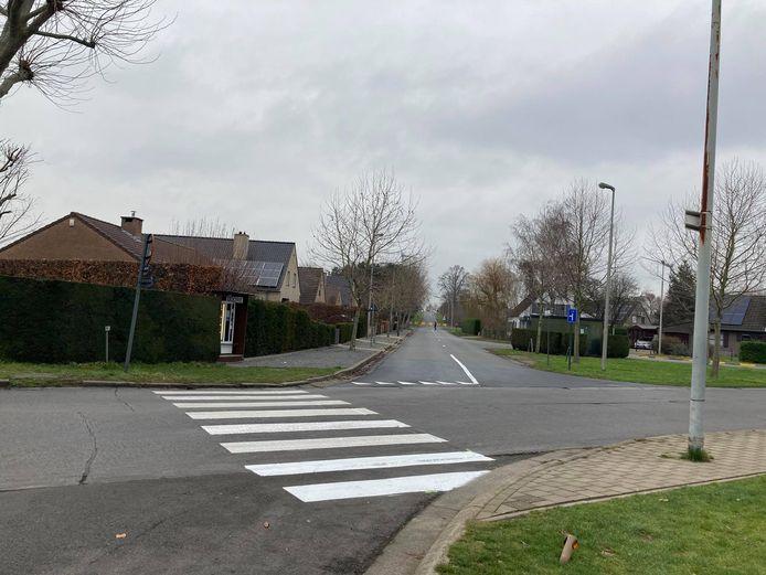 Het zebrapad ligt er in de Groenstraat.