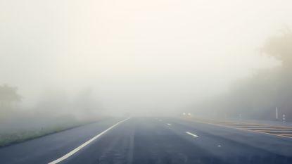 KMI waarschuwt voor mistige ochtend, vanaf volgende week kans op winterse neerslag