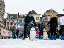 IJsbaan wellicht in winter terug in binnenstad Arnhem