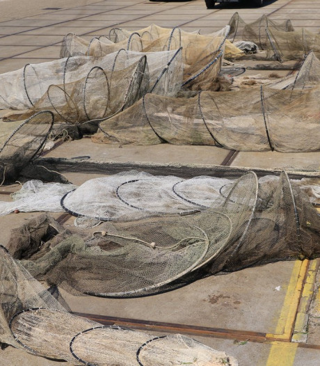 Tientallen aalfuiken in beslag genomen in Langeraar