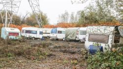 """Termont: """"Niet de bedoeling dat er nog meer Roma-kampen bijkomen"""""""