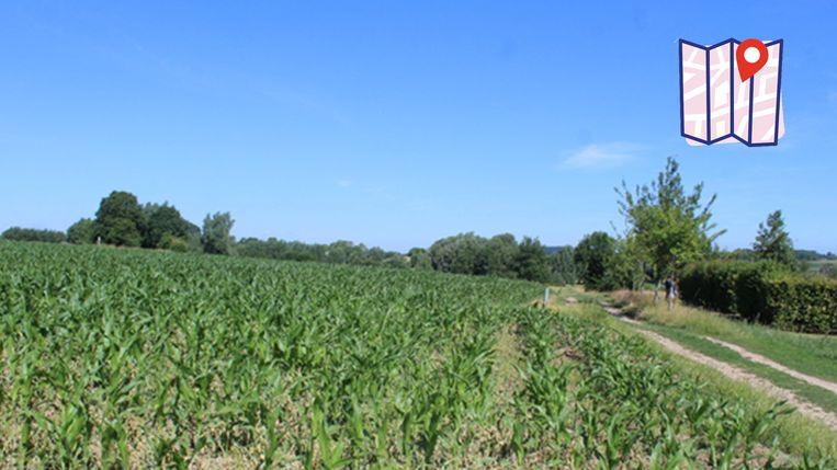 Plattenlandscentrum Paddenbroek ligt helemaal verdoken in de natuur.