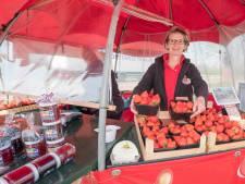 Bakken vol aardbeien bij fruitboerderij in Ouwerkerk: verkoop aan bakkers en restaurants ligt stil
