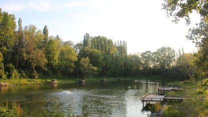 Voortaan ook dagvergunningen voor vissen in Steenbergvijver: 5 euro voor inwoners, 10 euro voor niet-inwoners