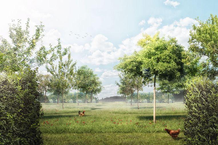 """""""Elke inwoner van Lebbeke zal kunnen genieten van het park. Bedoeling is het zo aangenaam mogelijk te maken voor iedereen en de leefbaarheid van Lebbeke ten volle te behouden"""", klinkt het bij Ipon."""