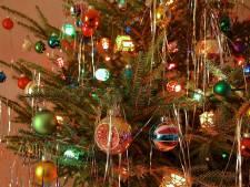 Kerstboom krijgt tweede kans in Harderwijks 'kerstbomenhotel'