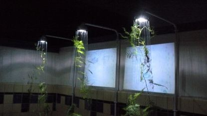 Florale kunst van L'Atelier steelt de show op Kunst in het Dorp