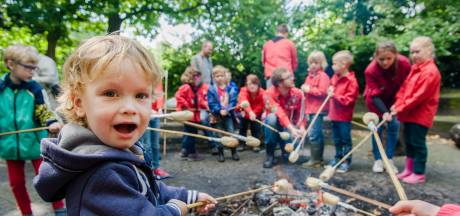 Scouting Schijndel ontvangt koninklijke eer