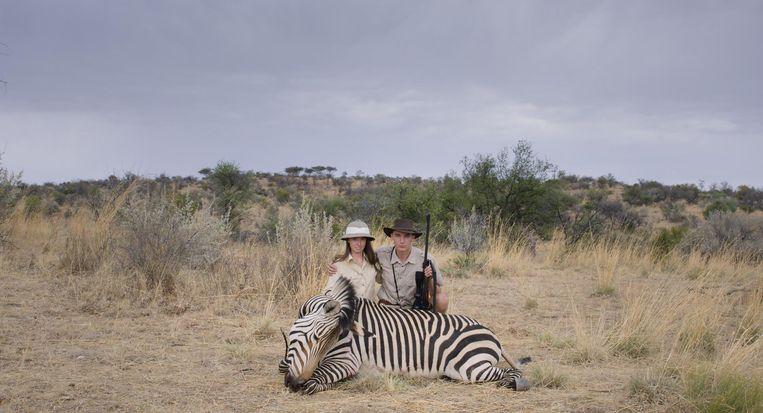 Safari. Beeld