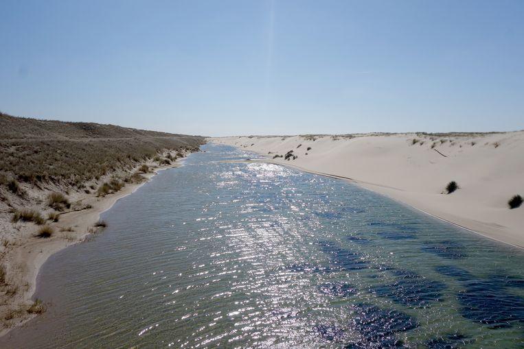 Duinen kunnen moeiteloos meegroeien met een stijgende zeespiegel. Beeld Joop Bouma