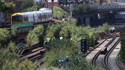 Drie doden bij treinongeval in Londen: vermoedelijk verraste graffitispuiters