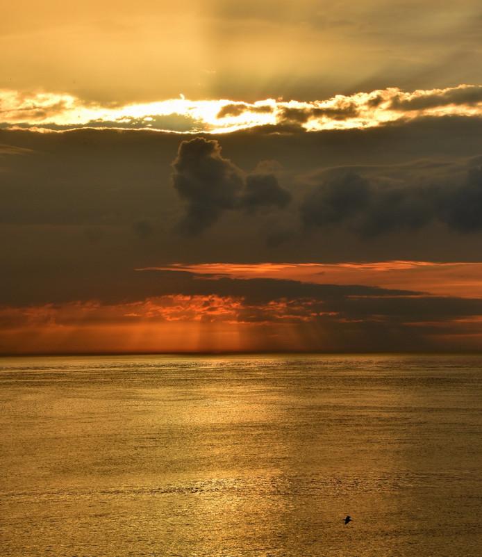 Voor een heftige bui genomen bij Westkapelle aan de Zeedijk