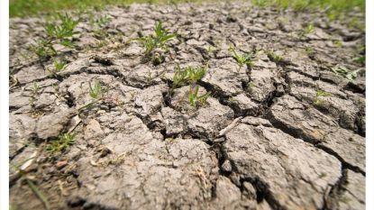 """""""Dringend werk maken van waterplan"""""""