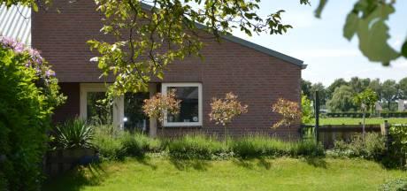 Brabantse zzp'ers tijdens corona: dierenpension At Home in Hooge Mierde heeft 1 gast, labrador Joep