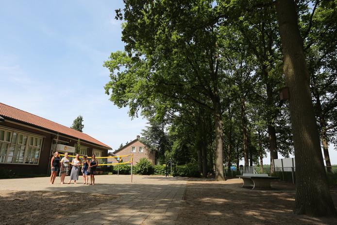 Uit de eiken op het schoolplein van St. Martinus Bussloo zijn 25 nesten van de eikenprocessierups weggezogen.
