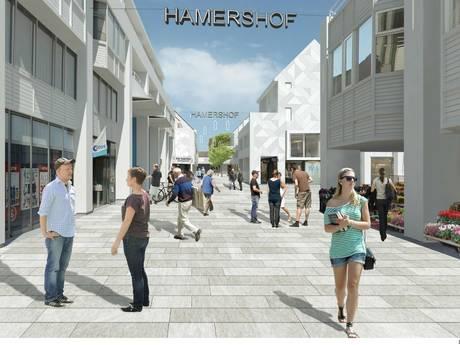 'Renovatie Hamershof is te duur'