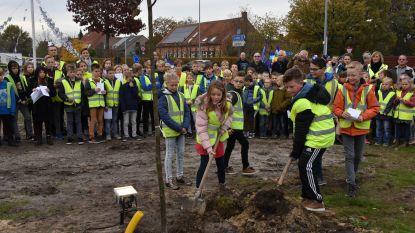 Leerlingen Qworzó en Vrije Basisschool Merksplas planten vredesboom