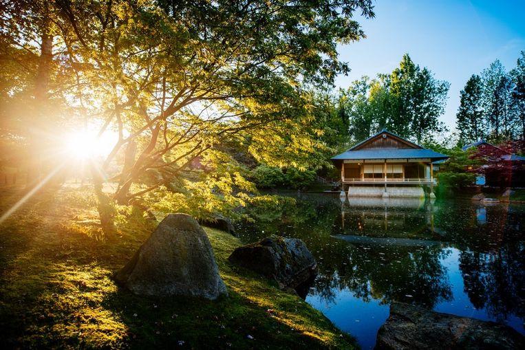 De Japanse tuin verwelkomt de docenten om het hoofd koel te houden.