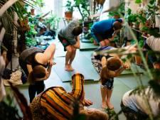 Door de lange rijen bij Oerwoud krijgt de stad een tweede, vegan-zaak: Plant
