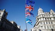 Schotland en Wales voeren druk op May op met gezamenlijke motie tegen brexit