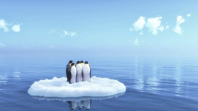 Antarctica heeft ongeveer drie biljoen ton ijs verloren sinds 1992, wat de zeespiegel met 7,6 millimeter deed stijgen. Verontrustend daarbij is dat de snelheid waarmee het ijs smelt de voorbije vijf jaar verdrievoudigde.