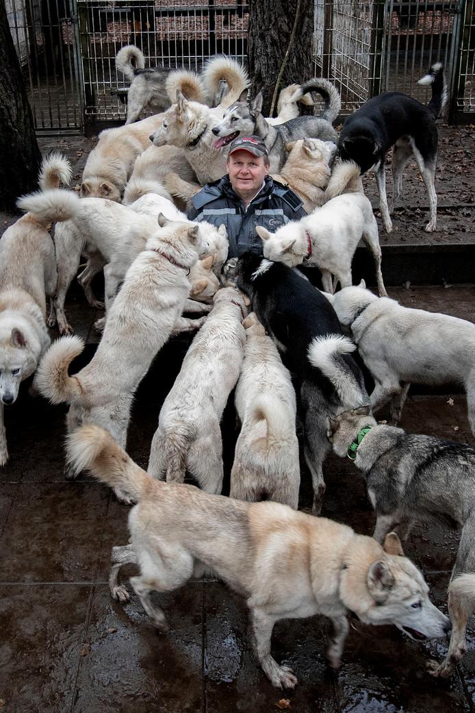 Marc leeft samen met een roedel van 34 huskyhonden in Brabant