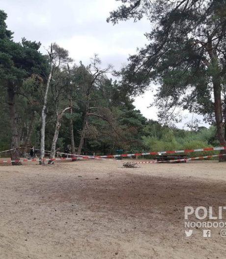 Hoornaarnest ontdekt in Lutterzand, politie zet omgeving rond nest af