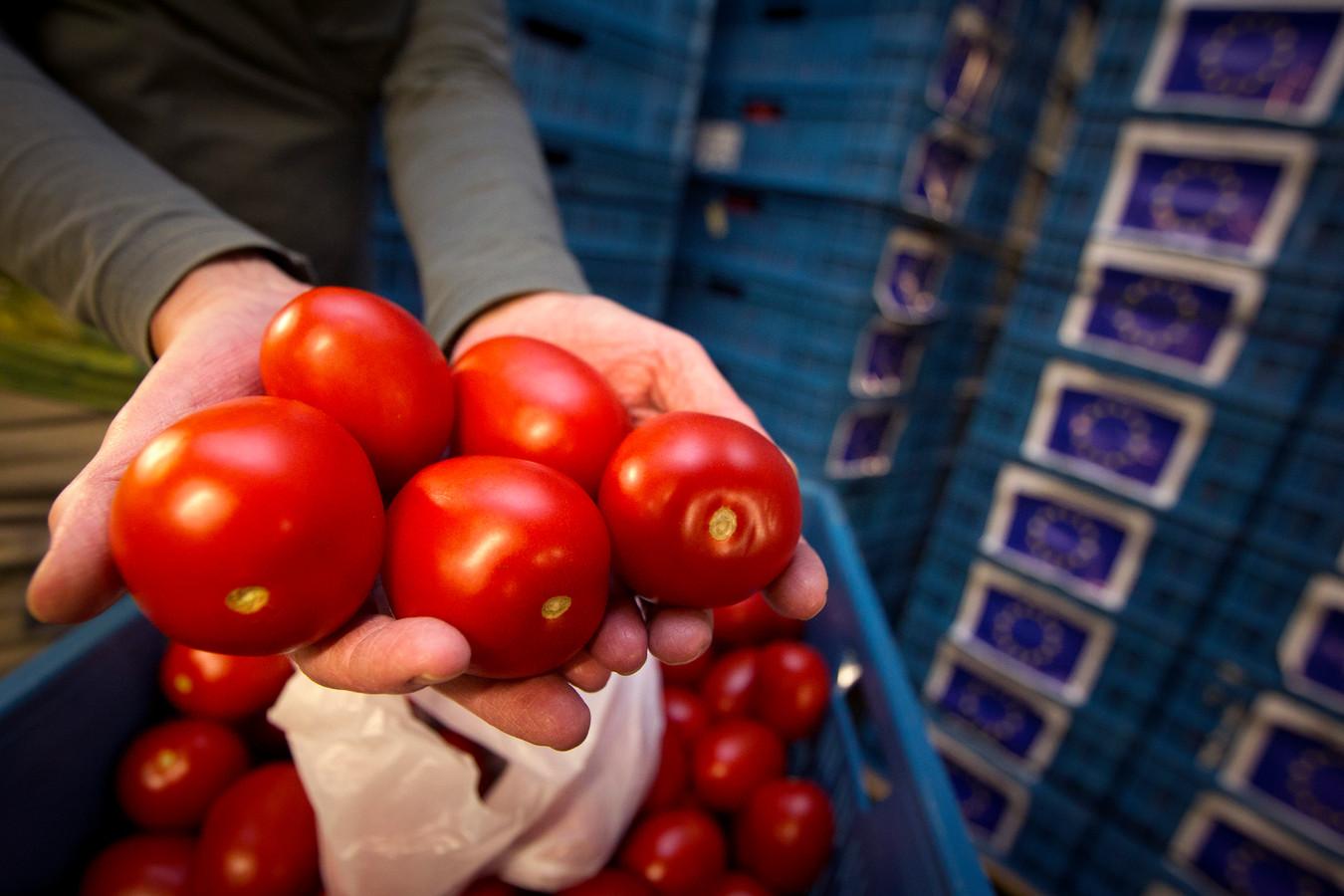 Tomaten bij de Voedselbank in Arnhem.